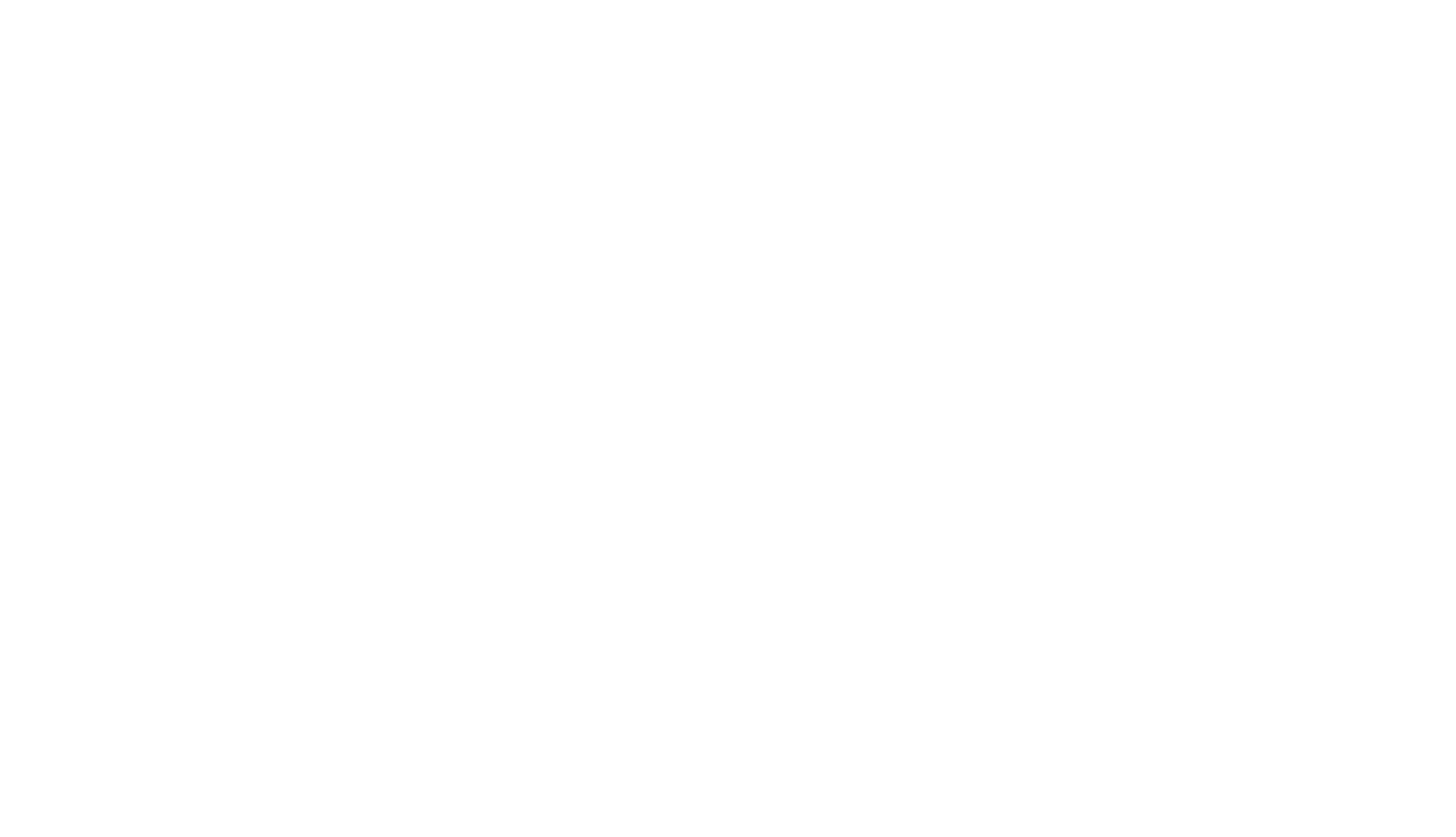 C29_LOGO-white